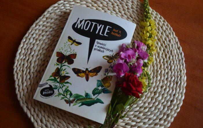 """""""Motyle. Opowieści... """": rencejza"""