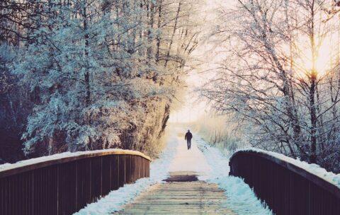 Cytaty o zimie
