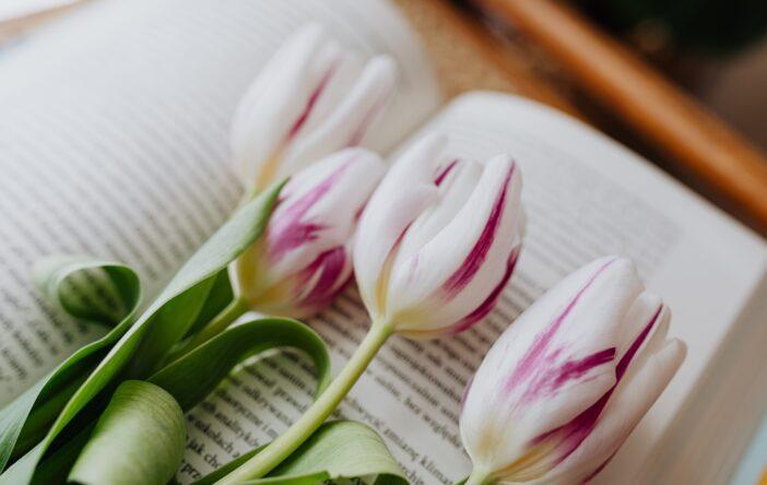 3 książki na wiosnę – klasyka pełna kwiatów
