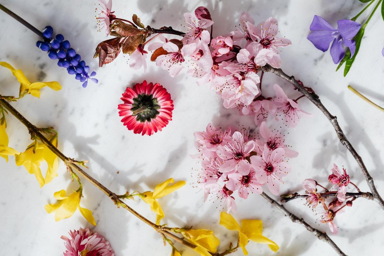 Najpiękniejsze kwiaty cytaty