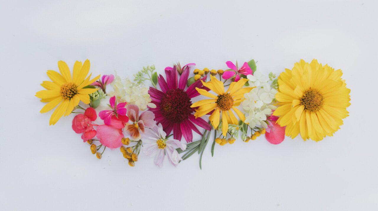 Wiosenne kwiaty,