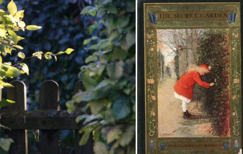 """Cytaty z książki """"Tajemniczy ogród"""""""