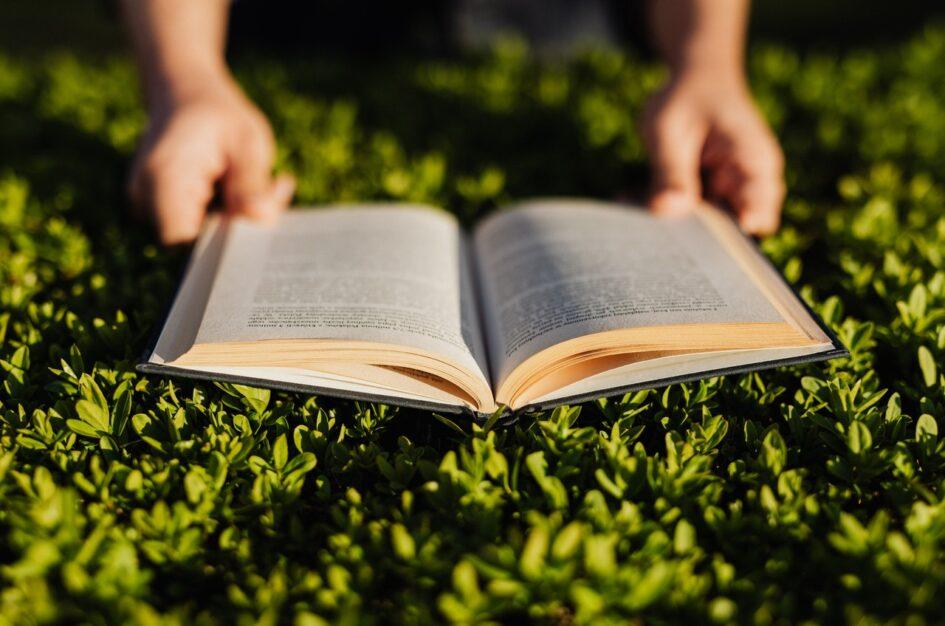 5 ciekawostek na Światowy Dzień Książki