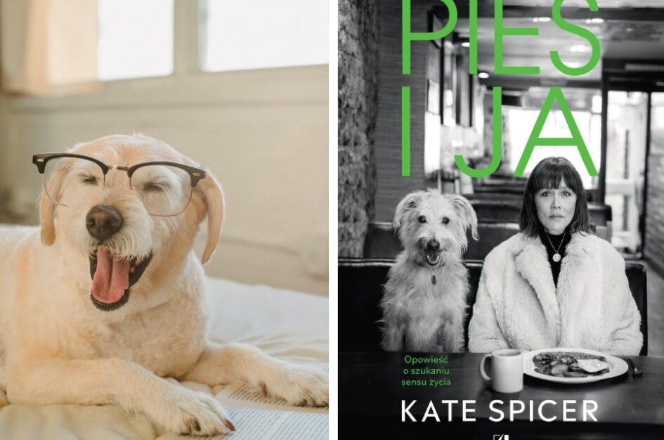 Kate Spicer. Lost dog