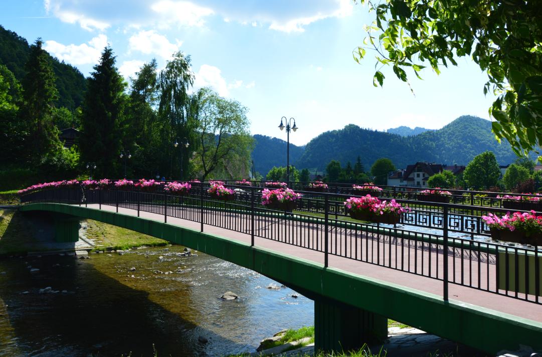 Szczawnica, most naGrajcarku