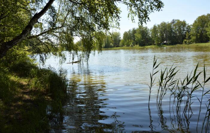 Jezioro Bartoszewo (lub: Bartoszewskie)