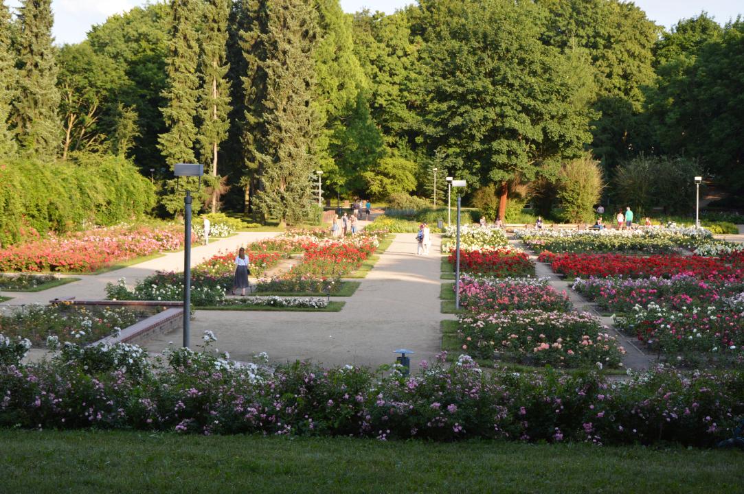 Park Kasprowicza Różanka