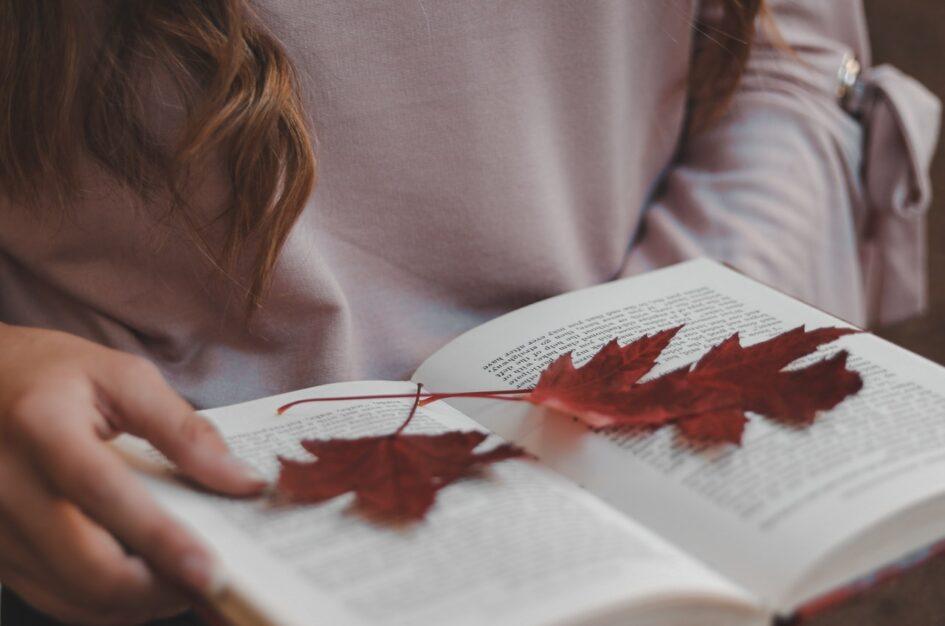 3 książki na długie wieczory – klasyka literatury ma jesień