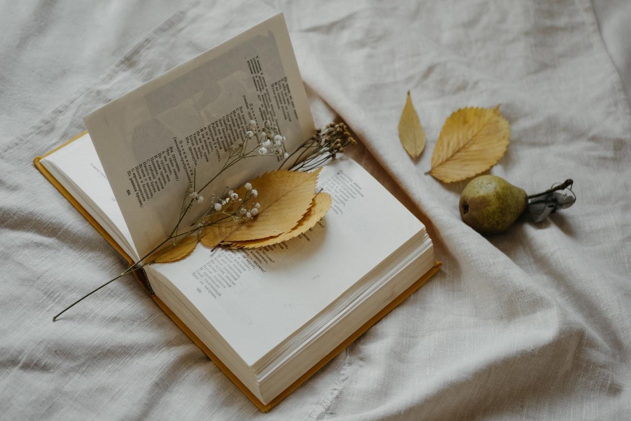 Dlaczego warto czytać poezję przykłady